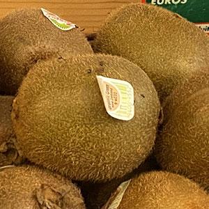 kiwi-lavieclaire