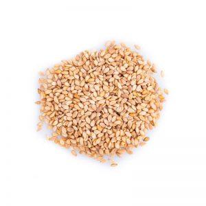 Graines de Sésame Complet
